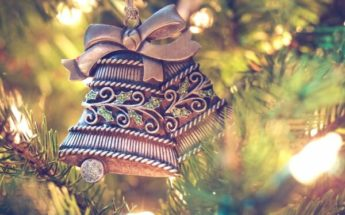 Welcome to our December Newsletter